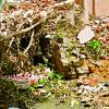Guest column: Alert! BBMP demolition rubble will cause flooding