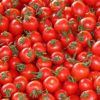 Anantapur: Tomato, onion prices plunge