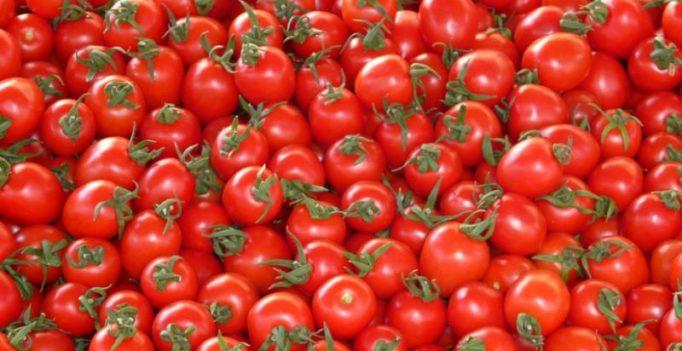 Anantapur: Tomato, onion prices plunge