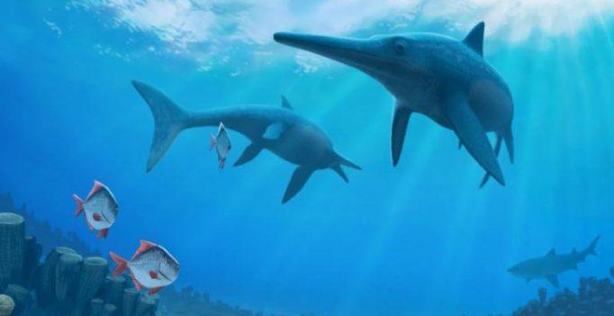 New Jurassic reptile species found in Britain