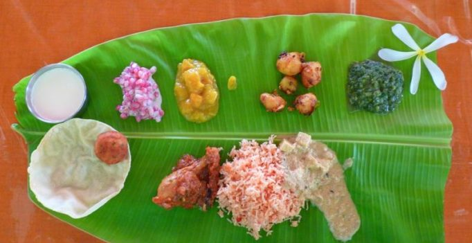 German company goes the Indian way; produces plates made of leaves
