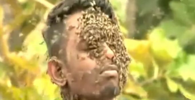 Video: Kerala man covers his face with 60,000 stinging bees