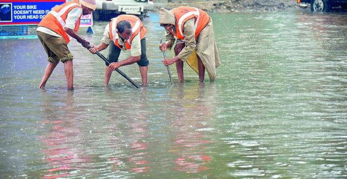 Hyderabad: Snakebites on the rise in rains