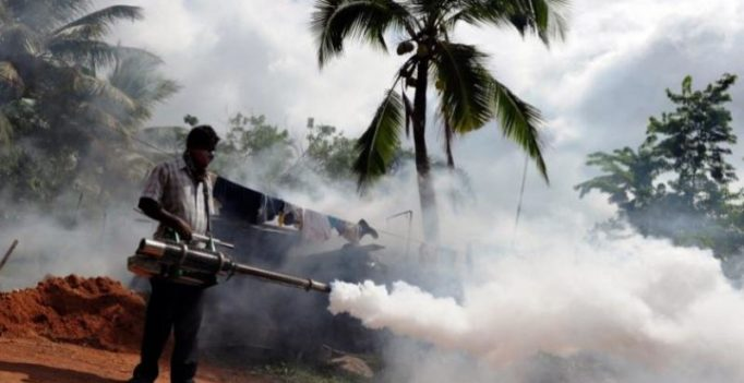 Sri Lanka's worst-ever dengue outbreak kills 225