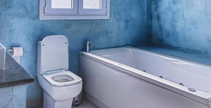 Flush after use! Thief leaves toilet dirty, US police uses faecal DNA to find him