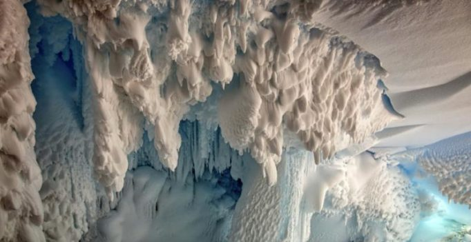 Warm Antarctic caves harbour secret life: scientists