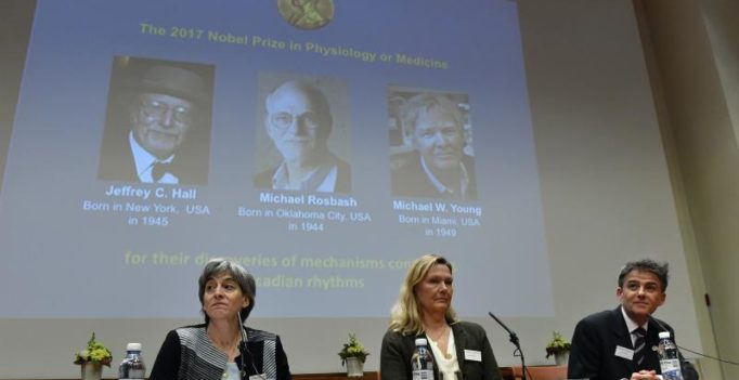 Nobel Prize for medicine goes to 3 American scientists for body rhythm work