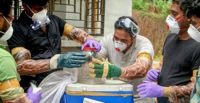 Nipah virus outbreak linked to Kerala well with 'many bats'