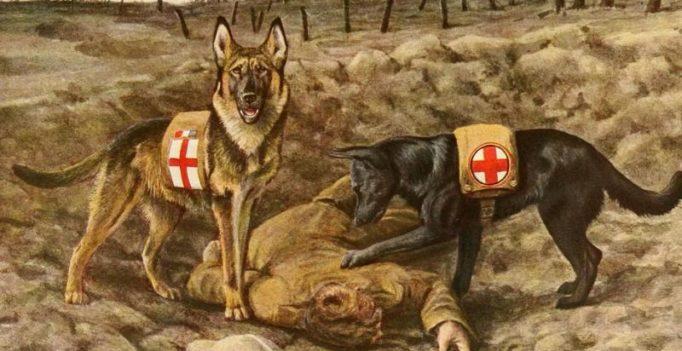 Monument honours most famous WWI war dog Stubby