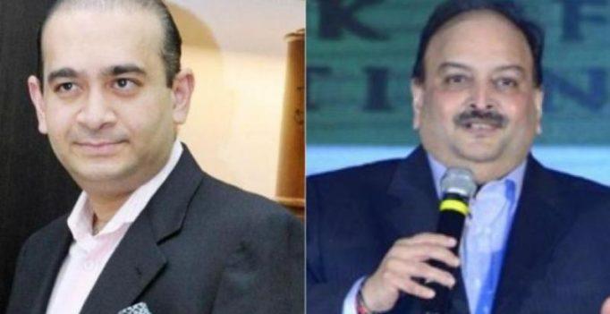 PNB fraud: ED moves court seeking fugitive offender tag against Nirav Modi, Choksi