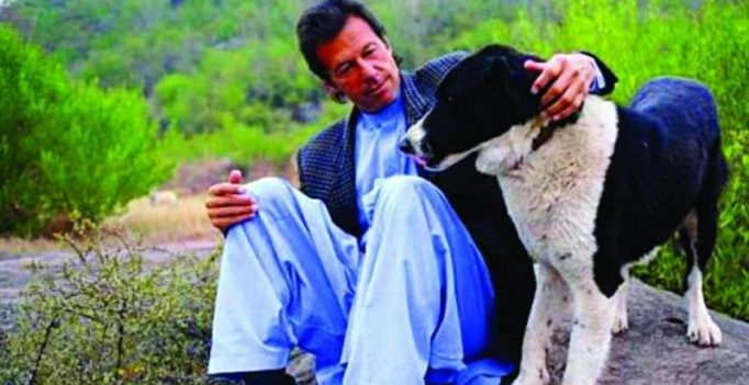 Imran Khan's pet dogs get their own Wikipedia page