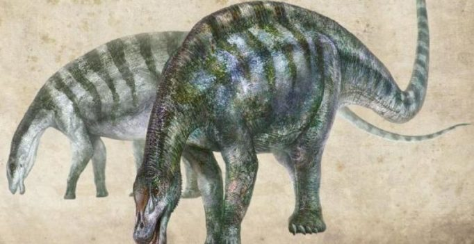 Amazing dragon from Lingwu fossils rewrite history of long-necked dinosaurs