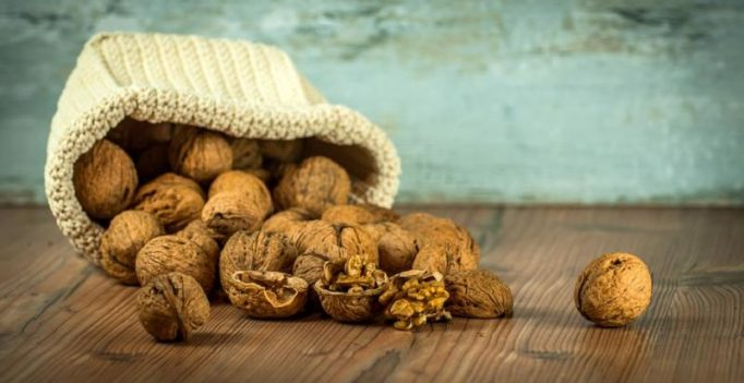 Walnuts a boon for reigning lifestyle ailments, says study