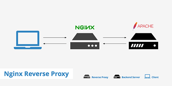 Nginx Reverse Proxy for Apache