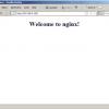 Installing Nginx With PHP5 And MySQL Support On Ubuntu 8.10