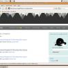 Installing Songbird 0.3 Developer Pre-Release On Ubuntu 7.10 (Gutsy Gibbon)