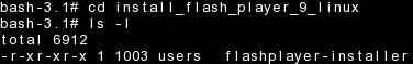 flahsisexec