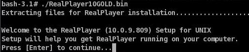 realplayerNewInstall6
