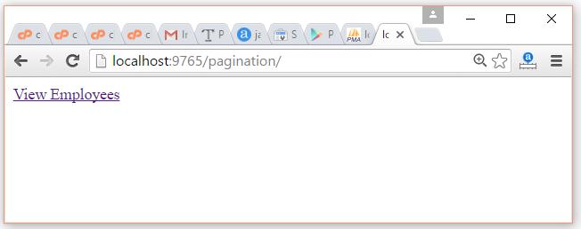 pagination1