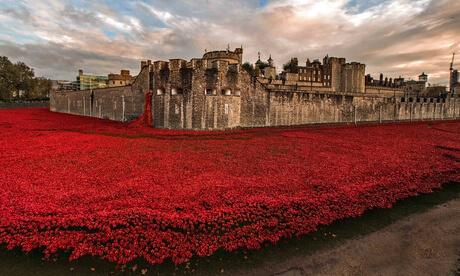 poppies-london-witness-013