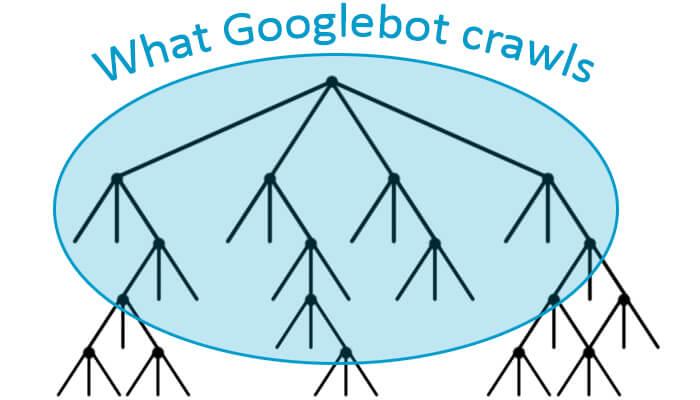 sel-5-what-googlebot-crawls