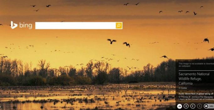 Bing Sounds Off: Adds Audio To Homepage